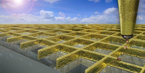 printed-nanowalls