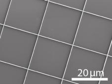 printed-nanowalls2