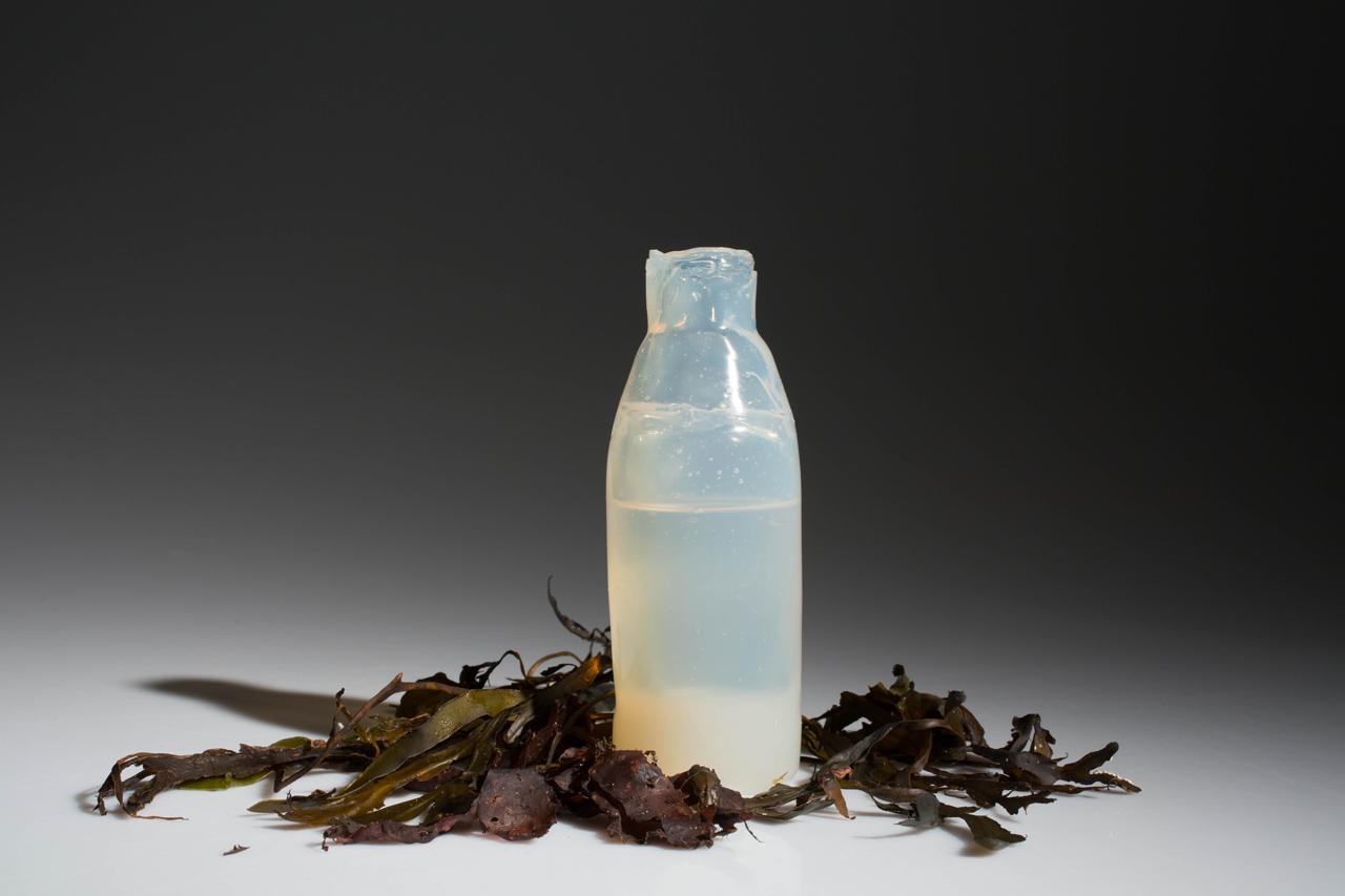algae-bottle