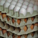 Chargenummer auf Eierkartons
