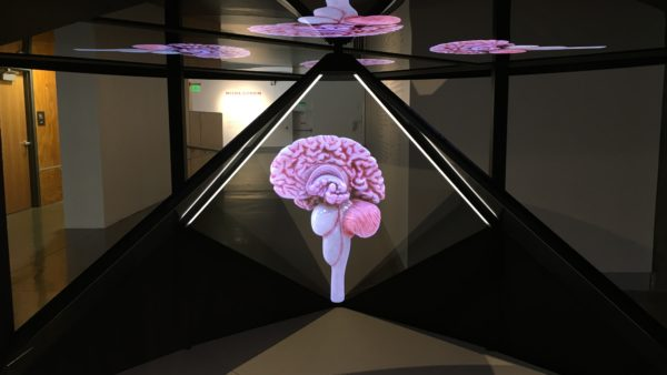 3D holograms